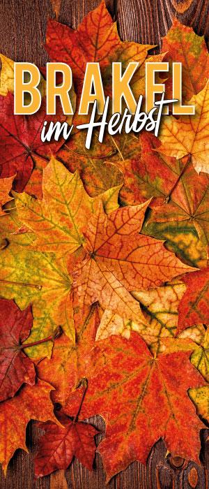 Brakel im Herbst